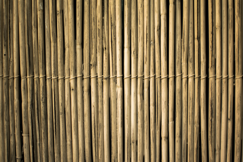bamboo-design-fence-2463358